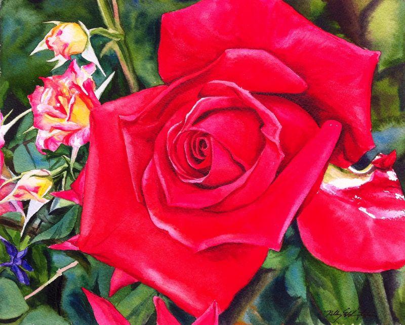 Rose1b
